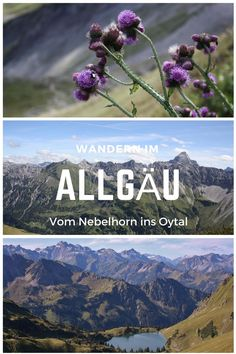 Panoramic tour in the Allgäu Alps - over the Laufbacher Eck into the Oytal - GERMANY travels Europe Destinations, World Clipart, Need A Vacation, Germany Travel, Oh The Places You'll Go, Outdoor Travel, Travel Around The World, Trekking, Adventure Travel