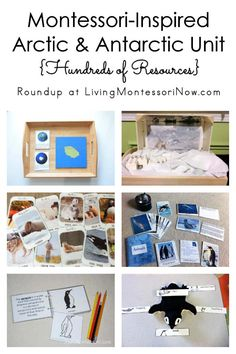 Hundreds of printables and activities for a Montessori-inspired Arctic and Antarctic unit study; perfect for a variety of ages at home or in the classroom - Living Montessori Now Preschool Themes, Montessori Activities, Montessori Homeschool, Homeschooling, Montessori Classroom, Animal Activities, Montessori Materials, Preschool Learning, Learning Resources