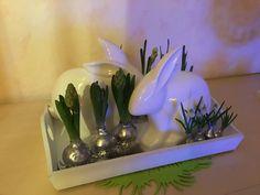 Blumenzwiebeln sind gewachst und mit Silberfarben besprüht