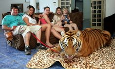 """This video is a result of searching for """"family"""" in Youtube. One of the results is about a family who lives with tigers and treats them like pets."""
