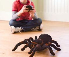 Remote Control Tarantula Spider  Freak out friends and family by infesting their homes with the remote control tarantula spider. This radioactive sized tarantula measures a whopping six inches long and features awesome-crawling-action so you can unleash terror in any household.  $24.99  Check It Out  Awesome Sht You Can Buy