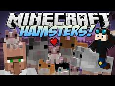 Minecraft | HAMSTERS! (The Great Hamster RACE!) | Mod Showcase - YouTube