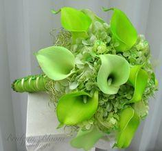 Beautiful green calla lilies
