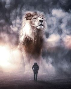 Imaginary World With Giant Animals Lion King Art, Lion Of Judah, Lion Art, Lion King Pictures, Lion Images, 3d Wallpaper Lion, Image Lion, Animals Tattoo, Wolf Movie