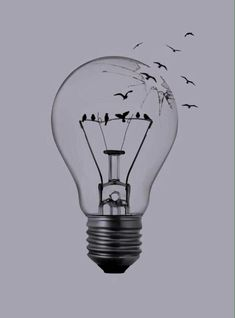 Vintage Clip Art Old Fashioned Light Bulb The Graphics . The Dark Side Of Process Improvement Quotiss. Drawing A Cartoon Light Bulb. Art Drawings Beautiful, Cool Art Drawings, Bird Drawings, Pencil Art Drawings, Art Drawings Sketches, Art Sketches, Drawing Ideas, Horse Drawings, Drawing Art