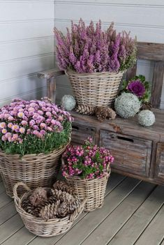 15 Unique and Beautiful Container Garden Ideas-Front Porch Decor-Wicker Basket G. - basket beautiful Container DecorWicker Ga - 15 Unique and Beautiful Container Garden Ideas-Front Porch Decor-Wicker Basket G… –