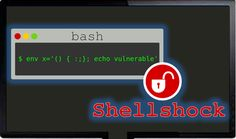 """The Shellshock Bash Vulnerability. Is your Server affected?""""the """"Bash Bug"""" that could affect milions of computers using Linux, Unix, and OS X. Web Domain, Domain Hosting, Hosting Company, Cloud Computing, Linux, Vulnerability, Computers, Technology, Blog"""