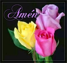 Beautiful Flowers Pictures, Flower Pictures, Cross Pictures, Yes And Amen, Bible Verses For Women, Bible Verses Quotes Inspirational, Always Remember You, Love Never Fails, God Bless You