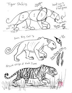Whenever I have a sponsored child who's interested in drawing, I send them some of the wonderful pages from this site:   how to draw horses, tigers, dragons, birds.   Very cool!