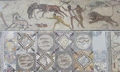 "Museum of Tripoli: Mosaic of the Gladiators from Leptis Magna: (above) a detail showing ""venationes"", fights with or between large wild animals; (below) central part of the mosaic showing sea creatures Roman Gladiators, Greek Language, Julius Caesar, Ancient Rome, World History, Roman Empire, Wild Animals, Sea Creatures, Archaeology"
