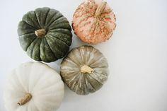 It's Pumpkin Season! – Free People Blog | Free People Blog #freepeople