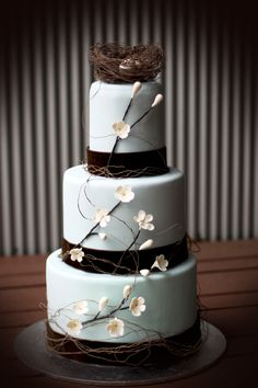 Wedding cake; Three tiered chocolate mud cake decorated in egg shell blue fondant with chocolate brown ribbon, twigs and white drop flowers and a birds nest topper.