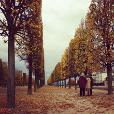 At Saint Germain en Laye