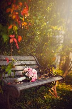 Ana Rosa Like my bench Beautiful Places, Beautiful Pictures, Beautiful Scenery, Romantic Pictures, Autumn Scenery, Beautiful Gardens, Background Images, Nature Photography, Outdoor