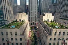 Dachgärten in New York: Eine Oase im 24. Stock | Lebensart | ZEIT ONLINE