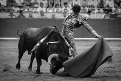 El diestro JOSÉ TOMÁS está anunciado 2 tardes en la próxima Feria Taurina de Valladolid  ¿Te lo vas a perder? #Septiembre2016 #ValladolidEsTaurina #TienesQueVenir #FeriaTaurina #NuestraSeñoraDeSanLorenzo
