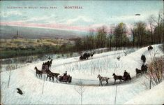 Le mont Royal, un trésor à la fois historique et naturel Le 9 mars 2005, le gouvernement du Québec a adopté le décret de l'arrondisseme... Montreal Ville, Photos, Canada, Horses, Archive, Vintage, Architecture, Antique Photos, Places