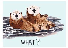 Otter cuteness.