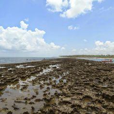 Arrecifes da praia de Carneiros, Pernambuco.