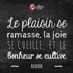Le plaisir se ramasse, la joie se cueille et le bonheur se cultive.  Bouddha