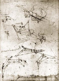 Leonardo DiVinci's flying machine drawings #hero