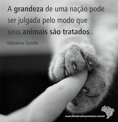 """""""A grandeza de uma nação pode ser julgada pelo modo que seus animais são tratados..."""" Mahatma Gandhi"""