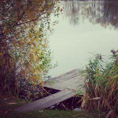 Csak egy pecabot hiányzik a képről:) #lake #nature #fishing Sárvár
