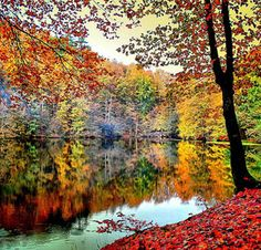 Autumn in Turkey