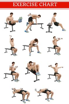 Best 10 Weight Bench Reviews & Buyer's Guide (2017) For Home Gym