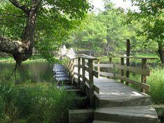 Keji Park Nova Scotia