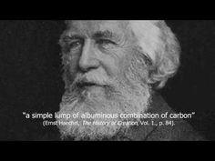 Darwinism's Downfall: Evolution Debunked