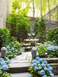Pretty, traditional courtyard planted with hydrangeas and evergreens. Fun pair of stone Foo Dogs welcoming guests to the patio.