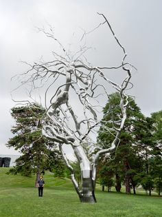 Ferment, Roxy Paine | The Nelson-Atkins Museum of Art