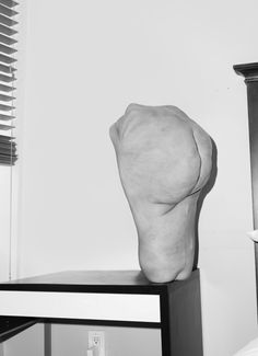 Morphed body parts by Asger Carlsen