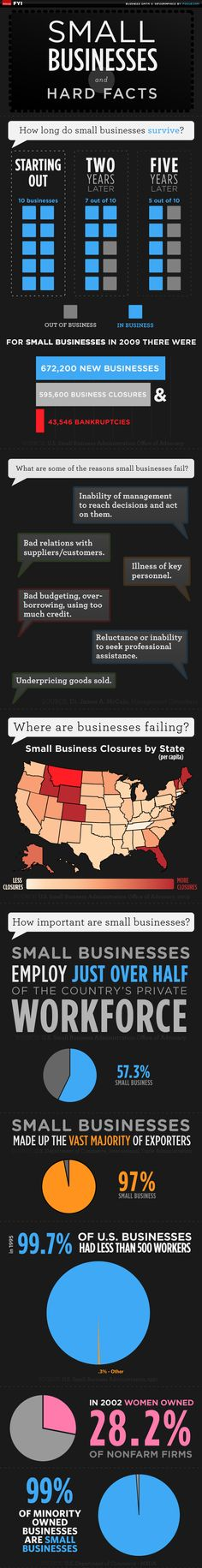 Small Business and Hard Facts Infographic  - Want To Make Your First Dollar Online? DollarCreator.com
