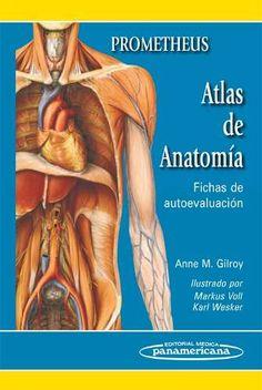 PROMETHEUS. ATLAS DE ANATOMÍA. FICHAS DE AUTOEVALUACIÓN  Autores: Anne M. Gilroy ISBN: 9788498353686 Editorial: Editorial Medica Panamericana Edición: 1° Edicion  Especialidad: Anatomia Páginas: 448 Encuadernación: Rustica, Anillado Medidas: 10 cm. X 14 cm. Año: 2011  #Anatomia #Libro #Medicina #AtlasAnatomia #LibreriaAZMedica