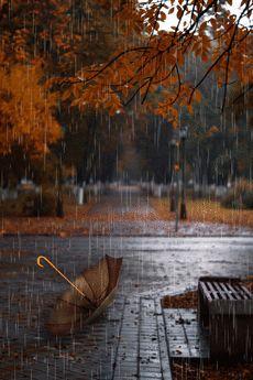Rainy Wallpaper, Cute Fall Wallpaper, Beautiful Nature Wallpaper, Beautiful Gif, Rainy Day Photography, Rain Photography, Autumn Photography, Cozy Rainy Day, Rainy Night