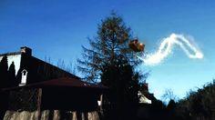 Mikołaj leci nad ogrodem
