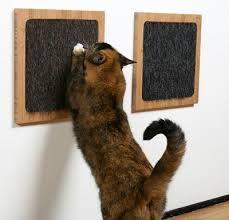 Resultado de imagem para arranhador de gatos como fazer