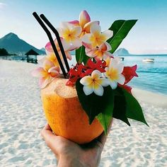 The right way to start a week . . . . #tropical #cocktail #islandlife #beachlife