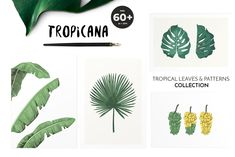 TROPICANA: tropical leaves&patterns by Lana Elanor on @creativemarket