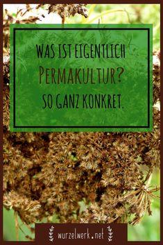 GARTENBÜCHER - Frau Fadegrad   Permakultur ...