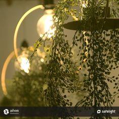 Satelight Hanging Garden Pendant Lights - Pendant - Products | Satelight