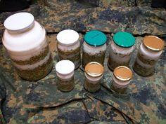 soohy: Syrop z pędów sosny zwyczajnej