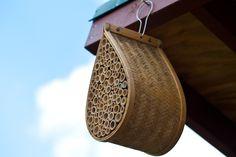 Kapka, která visí z okapu nebo ze střechy - i to může být zajímavý domeček pro užitečný hmyz.