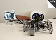 """Livecast bot: This friendly hexapod robot was created with a clever ADMojo partner """"Cyberarts"""" to not only move around but also send an """"rtmp"""" live stream to youtube. The robot is controlled by web interface and runs on android. The livecast bot, was recently displayed at the  """"Hong Kong X Taiwan Maker Faire"""", and got wow reactions.  If you are interested to learn more about our work, check out our website: www.asiadigitalmojo.com  #ADMOJO #maker #robots"""