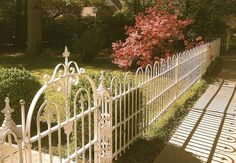 """""""The Azaleas were bloomin' beautifully  behind the white wrought iron fence  that surrounds a gorgeous old home on  the main street in Raymond!""""  ~~~~~~~~~~~~~~~~~~~~~~~~~~~~~~~  """"It's my favorite fence in town and a de-  light to see anytime, but really a http://www.fencecafe.com"""