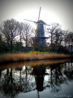 windmill - Alkmaar, The Netherlands