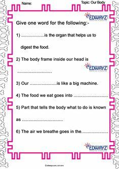 Our Body Worksheet Worksheet For Class 2, First Grade Worksheets, Science Worksheets, Science Lessons, Science Activities, Kindergarten Science, Kindergarten Worksheets, Holiday Homework, Work Sheet