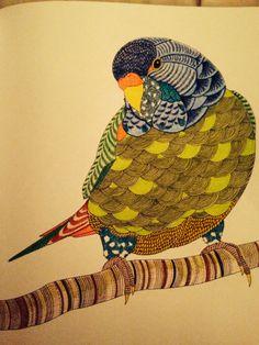 Design By Millie Marotta Batsford Books